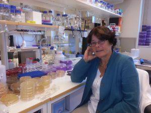 Professor Vicky Shingler