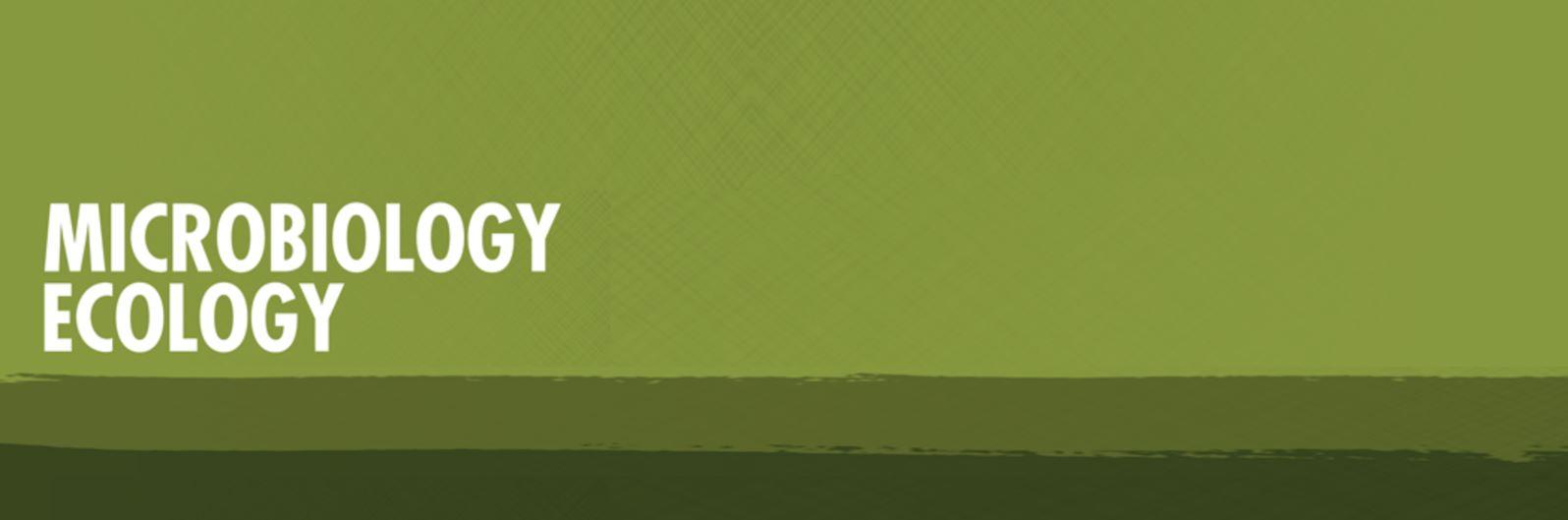 bg-overlay