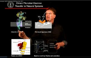Alfred Spormann speaking at World Microbe Forum